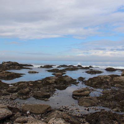 Salt Creek and Cape Flattery