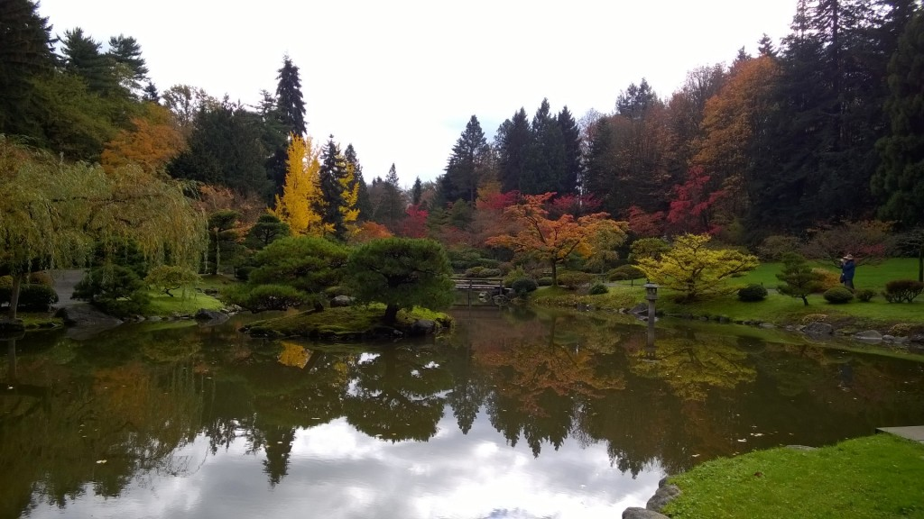 Japanese Garden in the Washington Park Arboretum