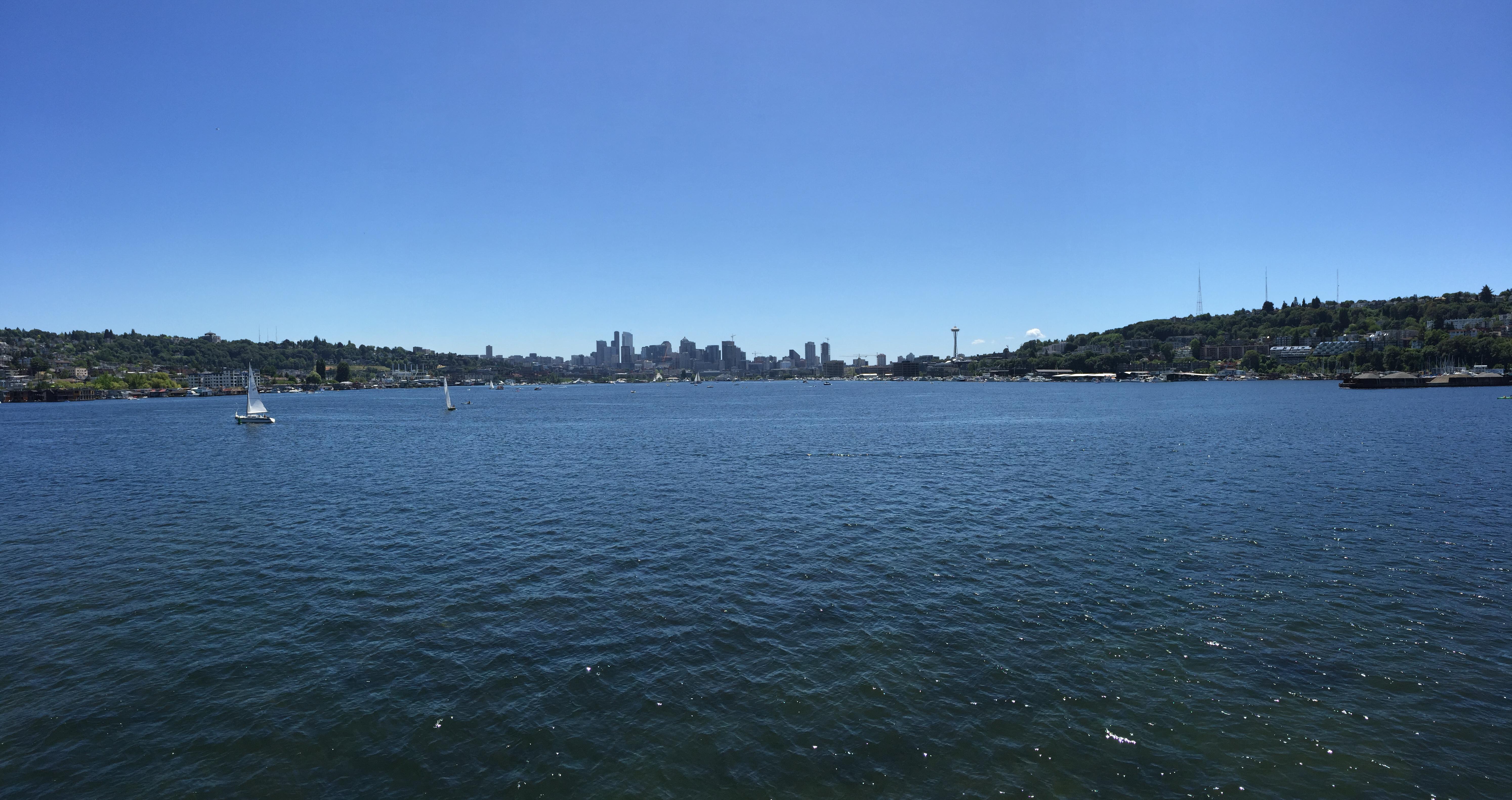 A Few More Seattle Views