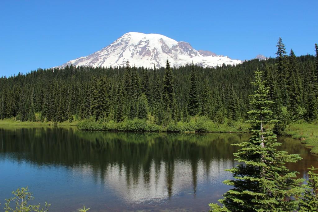Mt Rainier-14