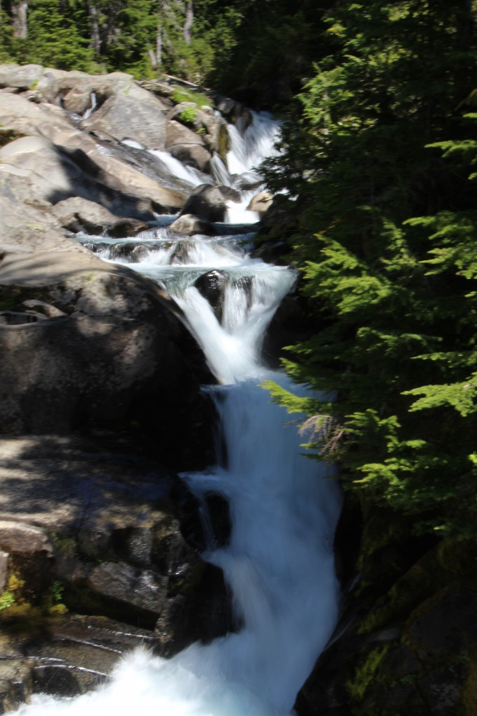 Mt Rainier-19