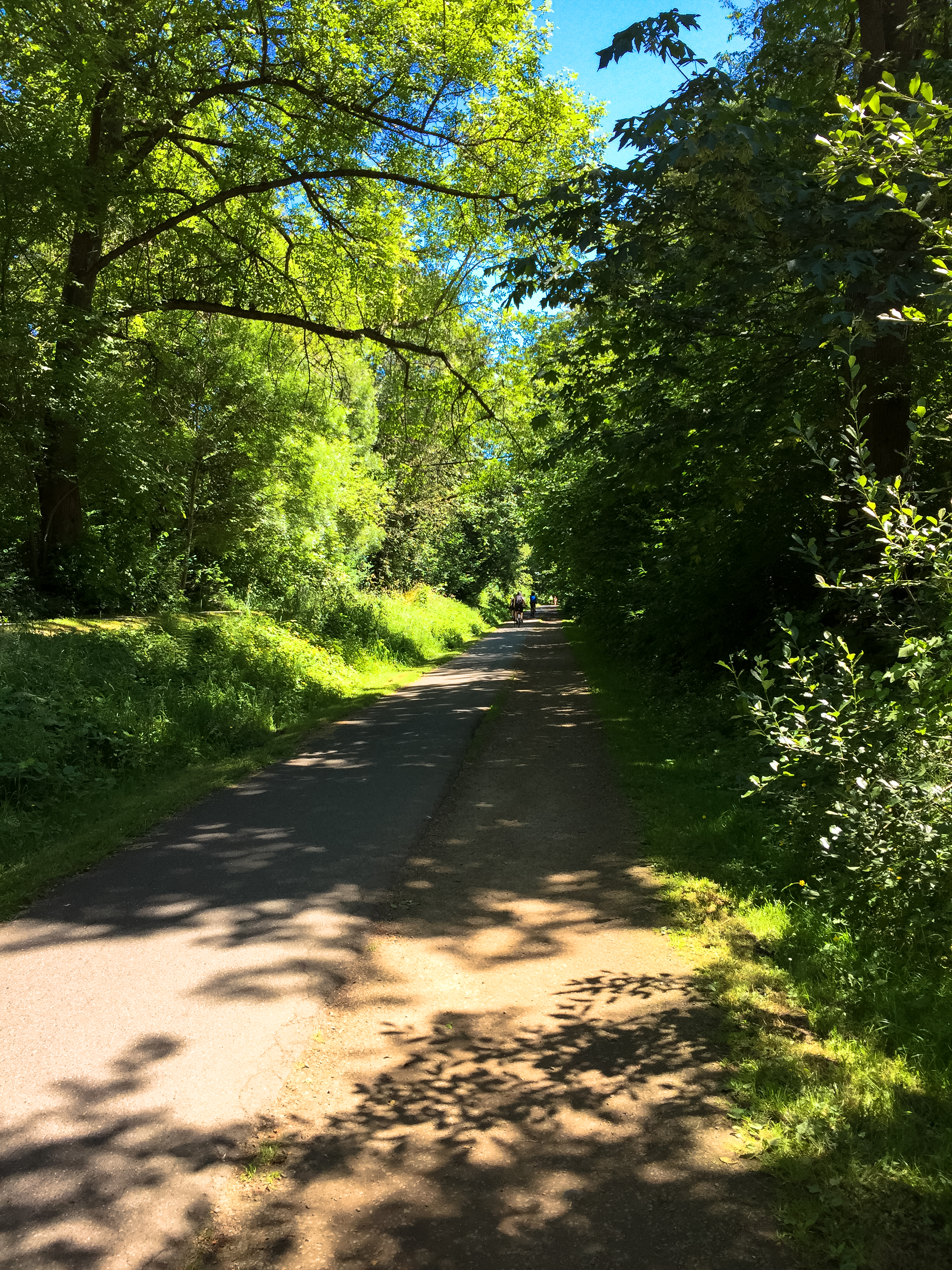 Biking the Burke-Gilman Trail