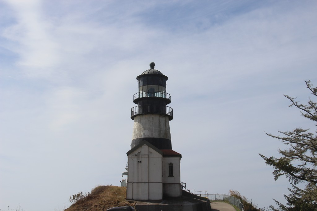 cape-disappointment-1