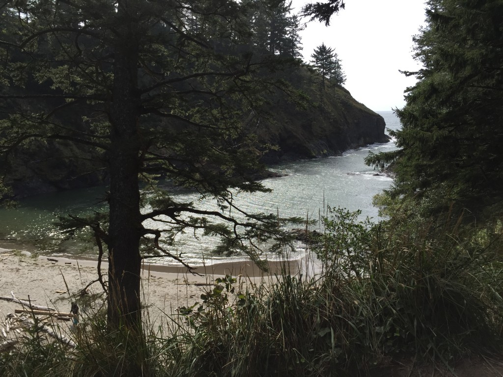 cape-disappointment-8