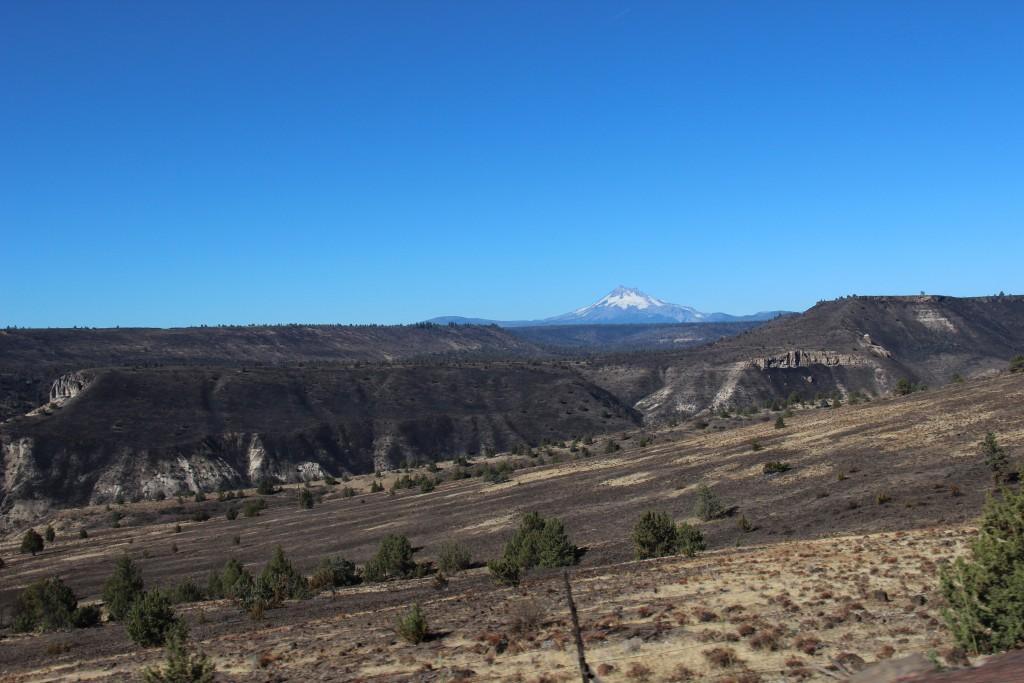 oregon-road-trip-3