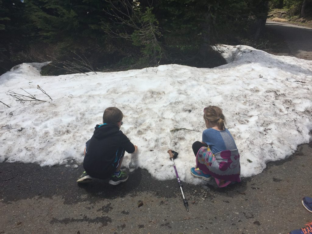 mount-rainier-kids-4