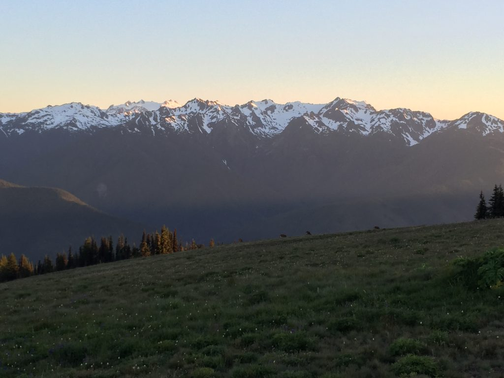 olympic-peninsula-hurricane-ridge-2