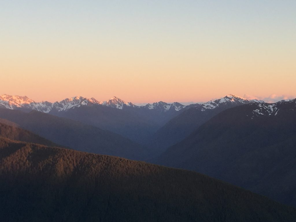 olympic-peninsula-hurricane-ridge-4