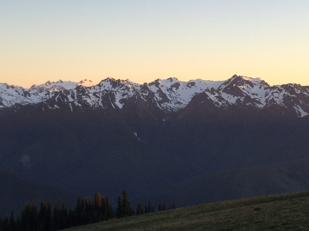 olympic-peninsula-hurricane-ridge-5