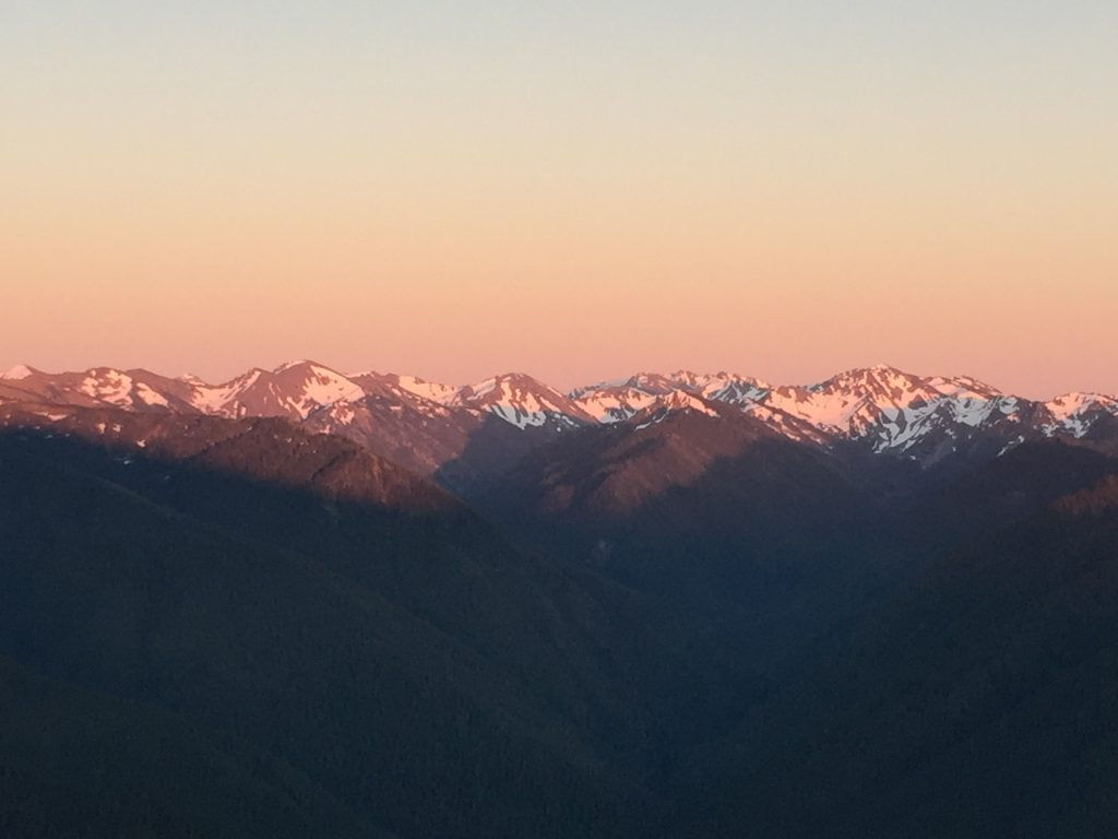 olympic-peninsula-hurricane-ridge-6