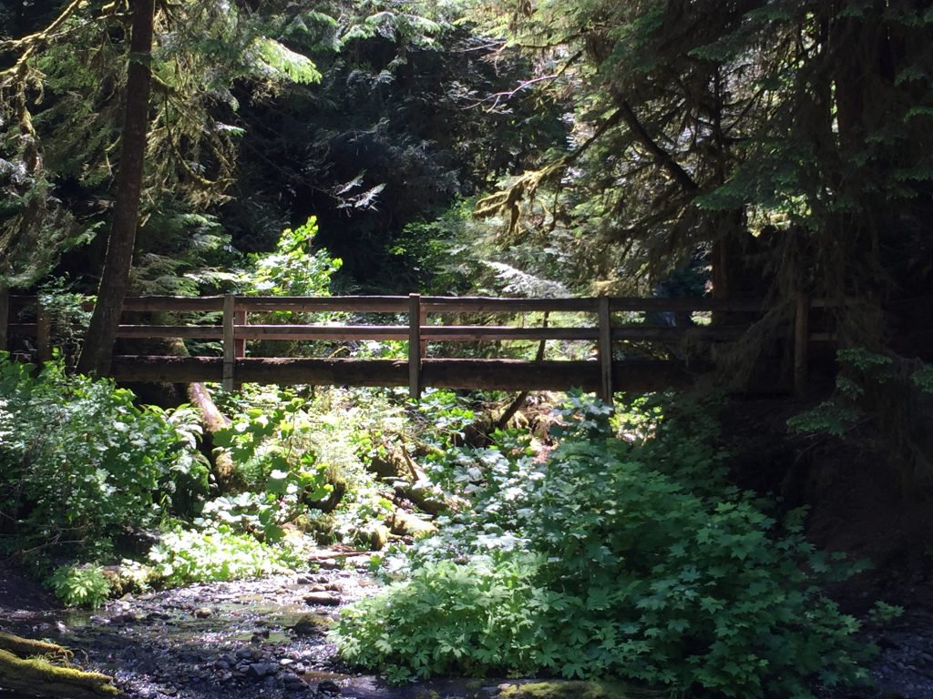 olympic-peninsula-marymere-falls-3
