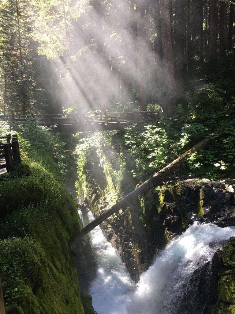 olympic-peninsula-sol-duc-falls-8