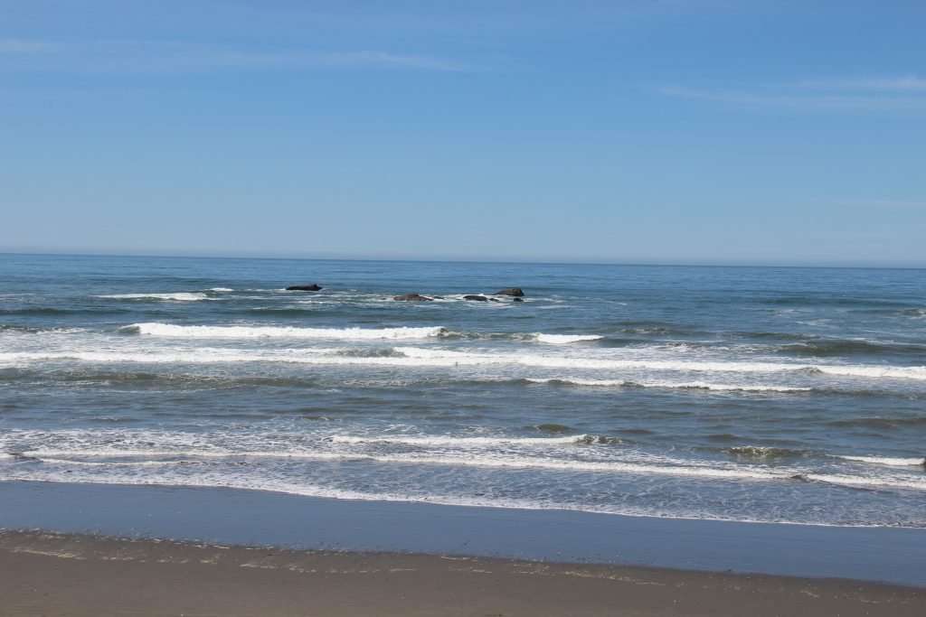 washington-coast-kalaloch-beach-2