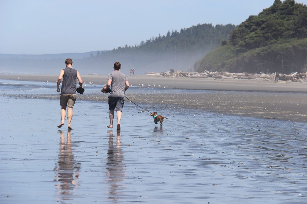 washington-coast-kalaloch-beach-9