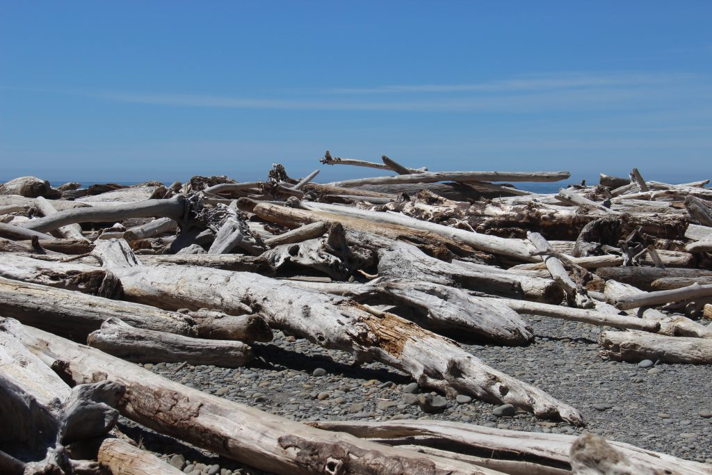 washington-coast-ruby-beach-1